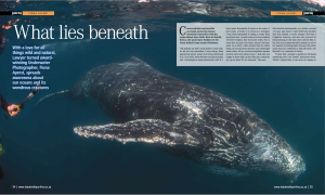 Leadership Magazine – What lies beneath